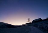 Duftacker Morning glow
