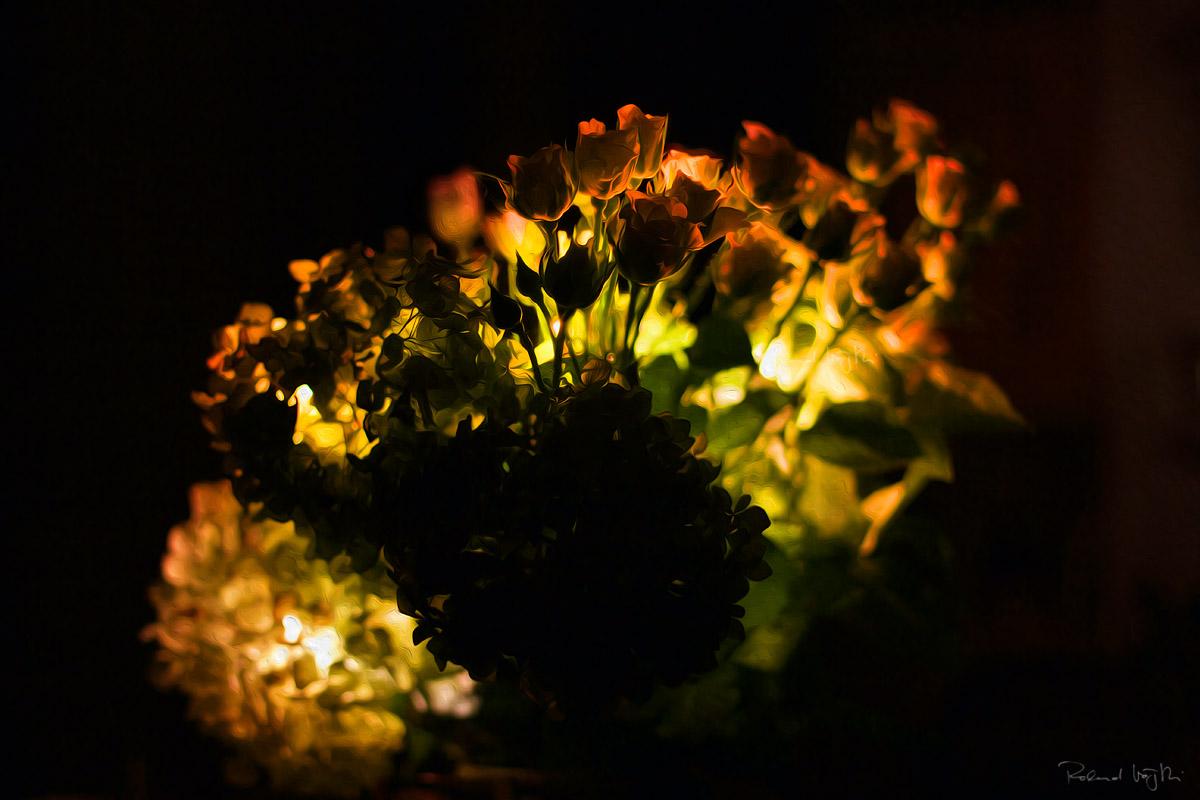 Passionate lights