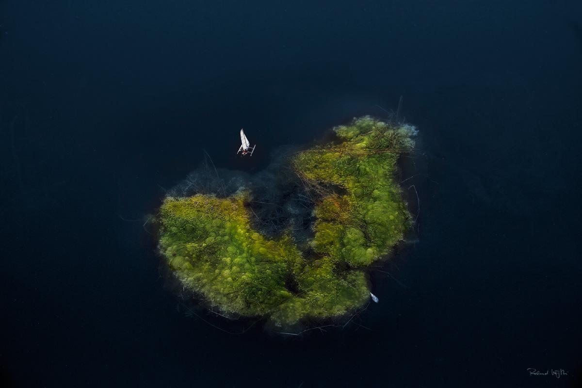 Paradise afloat - AMOS N°31